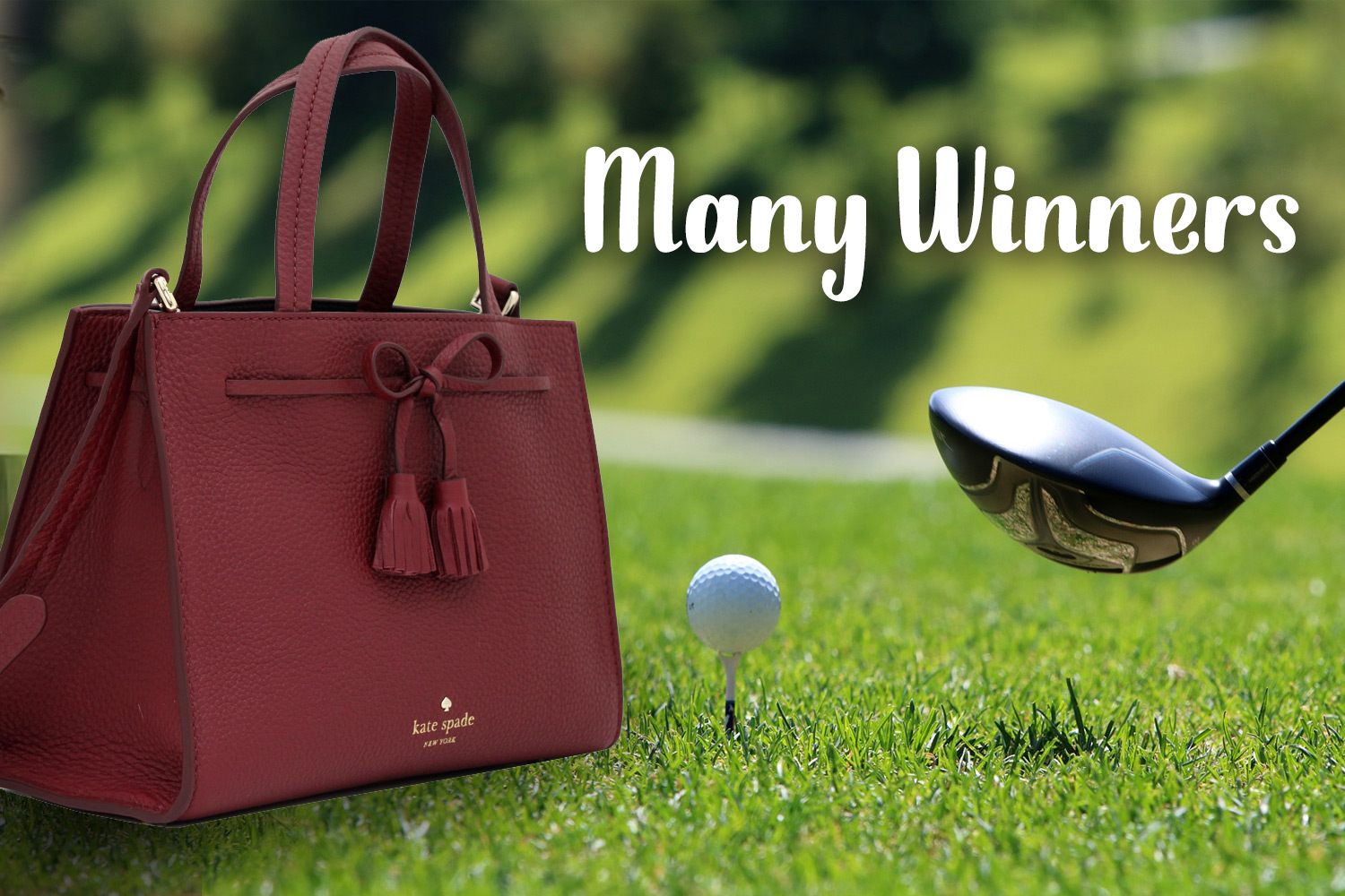 Winners Bags and Golf